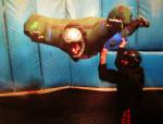 Indoor Skydive